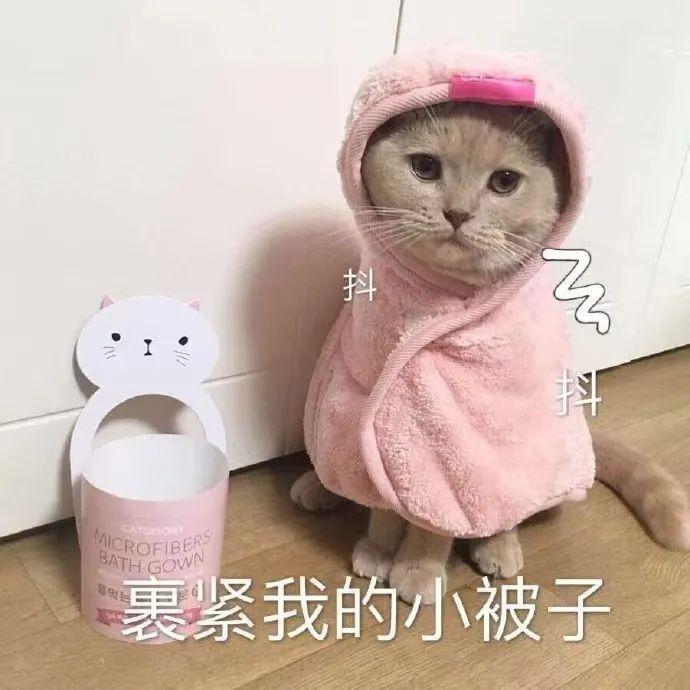 冷空气到货!深圳气温最低跌至18℃,尝试入秋ing……
