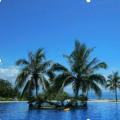 海南时政新闻显示离岛免税政策修改后吸引大量消费者