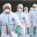 据悉目前国内一共有17个疫情中风险地区分别在辽宁与安徽省