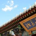 今日独家关注毕业北大清华的北方研究生选择去深圳当老师